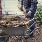 travaux jardin hiver