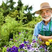 jardinage bio c est quoi