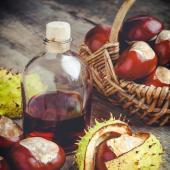 plante traitement naturel Hemorroides