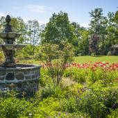 Amenager grand jardin