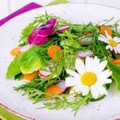 liste fleurs comestibles