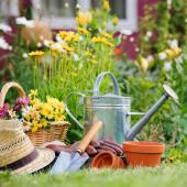 travaux jardinage octobre