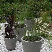idee plantes pour faire un jardin de pots
