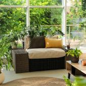 Plante appartement facile et deco